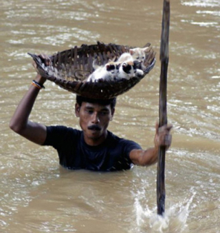 6_people-help-animals-even-when-life-is-bleak-18ww6sk