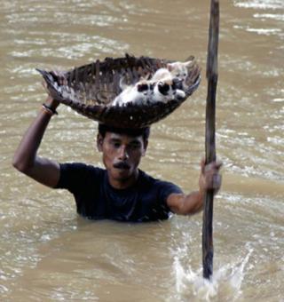 6_people-help-animals-even-when-life-is-bleak-18ww6sk