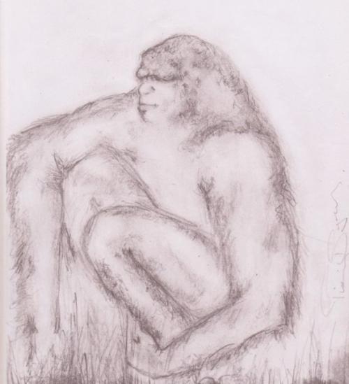 Original-yowie-drawing